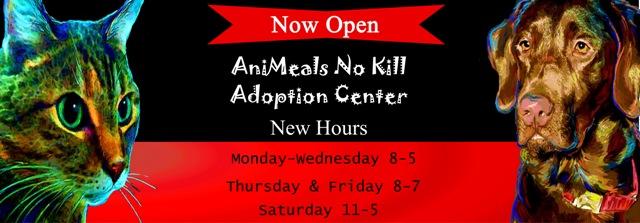website-adoption-banner-2_edited-2-copy