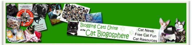 Cat Blogosphere