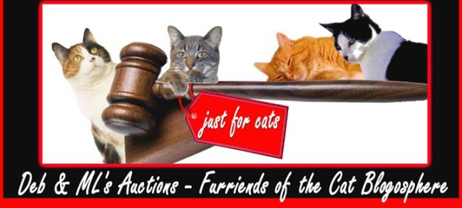 Fourth of July Auction
