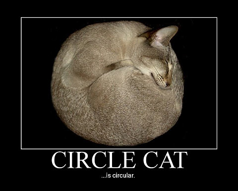 Soft Cat Food >> Smile! It's Circle Cat! :-) – CHECK OUT OUR BLOG