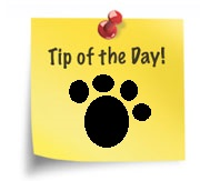tip_of_the_day