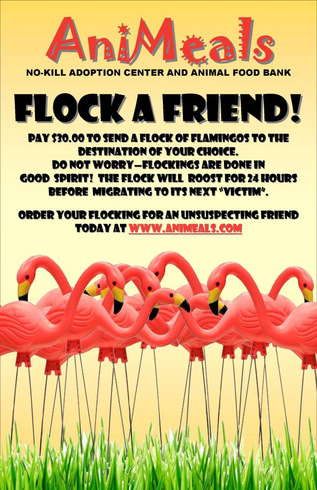 Flock a Friend Poster 7-6-11