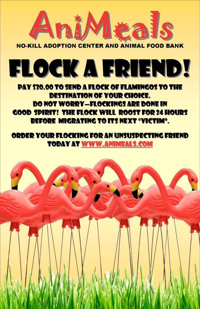 Flock a Friend Poster 7-6-11