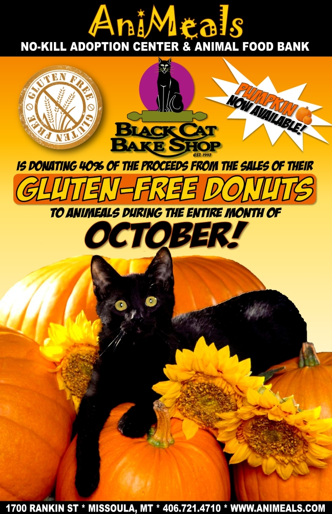Black Cat Bake Shop 9-30-14